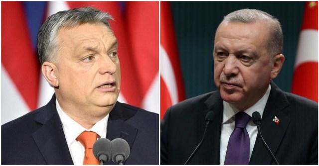 أردوغان وأوربان