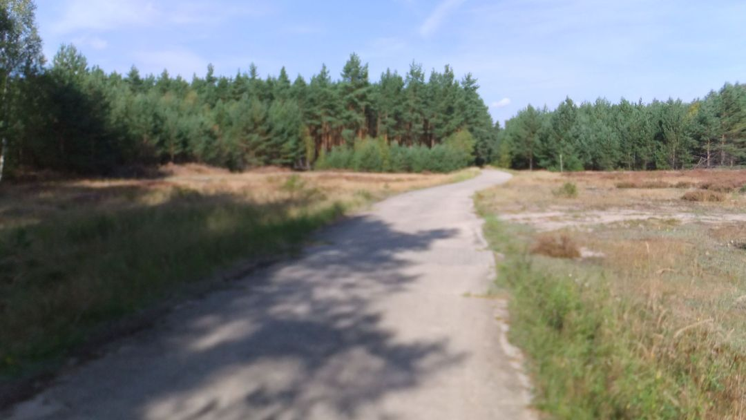 Spree Radweg 2014 - 0 (20)