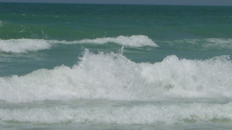 Siesta Key White Sand Beach