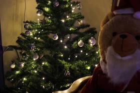 Santa bear and Christmas tree in Juniors' hallway