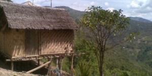 rumah-suku-terasing-lauje