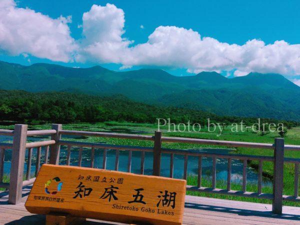 滋賀から北海道家族旅行 知床五湖