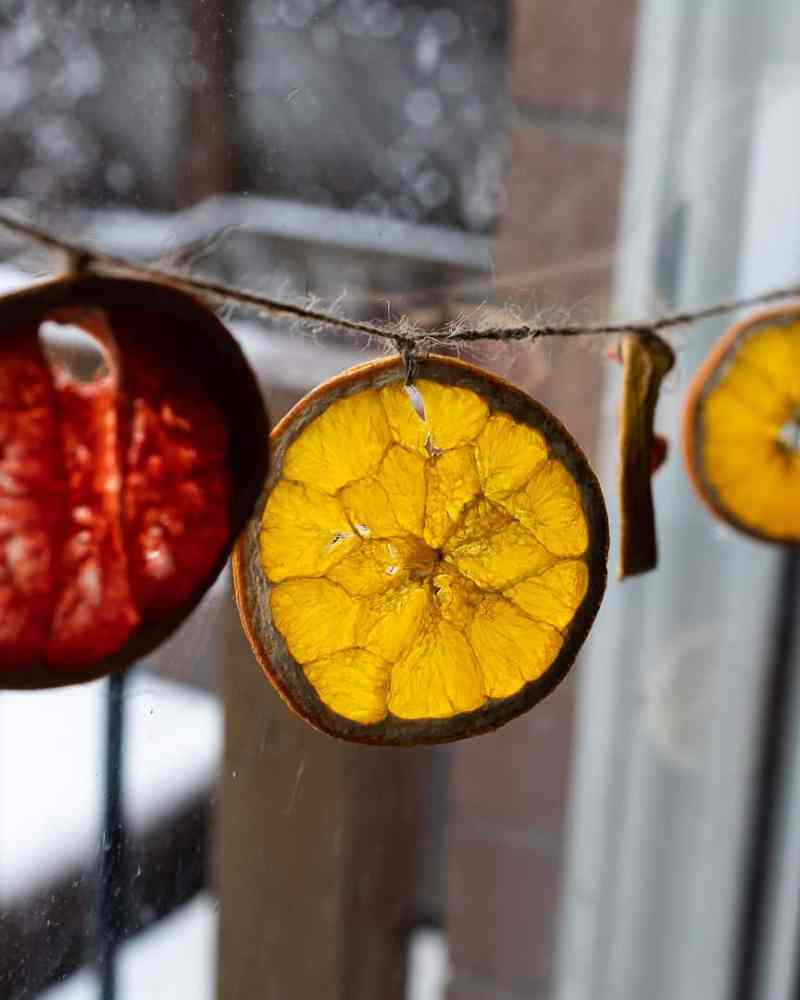 Dried oranges strung up as garlands by a window