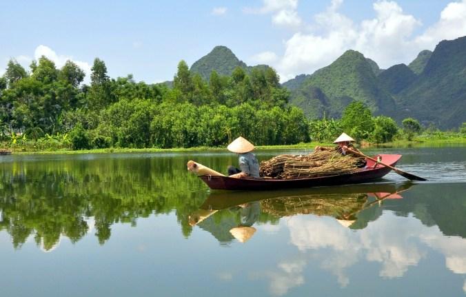 adopción en vietnam
