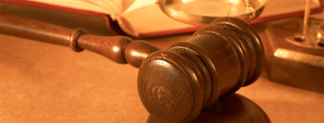 legislacao-para-montar-banho-e-tosa