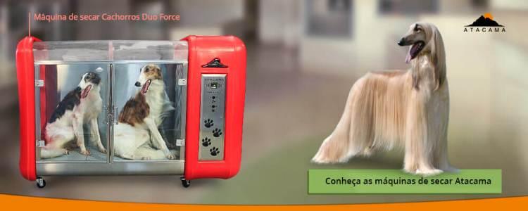 maquina-para-secar-animais-para-pet-shop