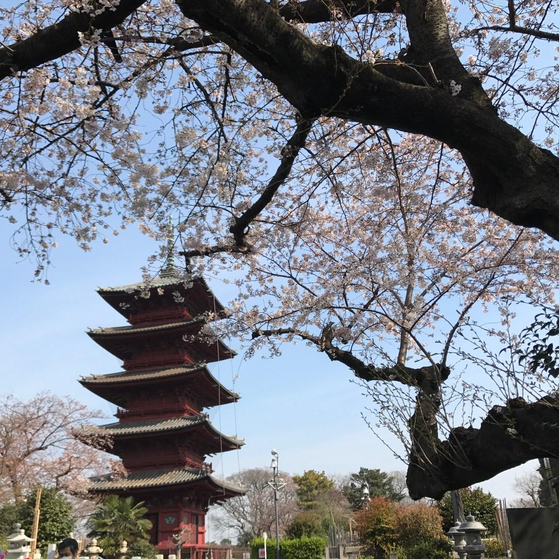 Ikegami Honmon-ji five-story pagoda