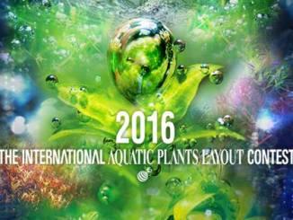 The International Aquatic Plants Layout Contest 2016