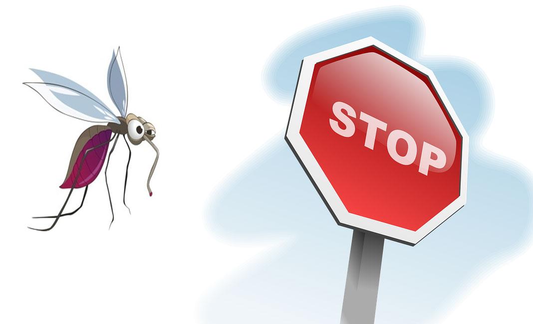 Yalova belediyesi ; Sinek sorununu başlamadan çözmeye çalışıyoruz..