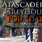 LIGHTHOUSE Atascadero: A Beacon for Our Youth By Donn Clickard