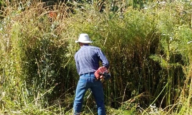 Santa Margarita Holds 15th Annual Creek Clearing