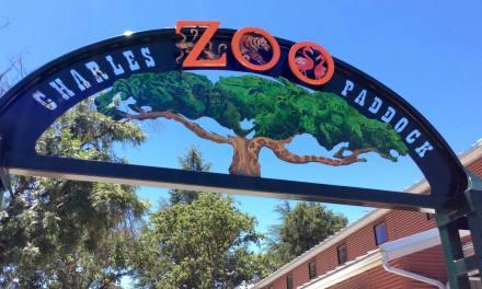 The Charles Paddock Zoo Presents Ice Cream Zoofari