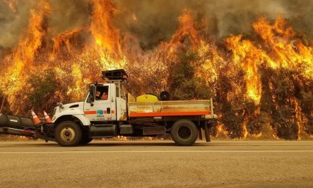 Dolan Fire Grows to 93,554 Acres, Firefighters Injured