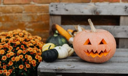 County Health Officer Issues Guidance for Safer Halloween Activities During COVID-19