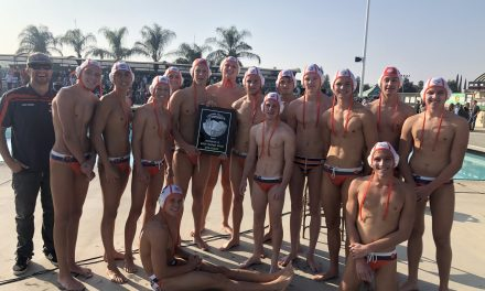 Greyhounds Fall in D2 Boys Water Polo Final