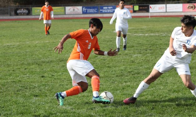 Hounds Soccer Primed for Breakout Year