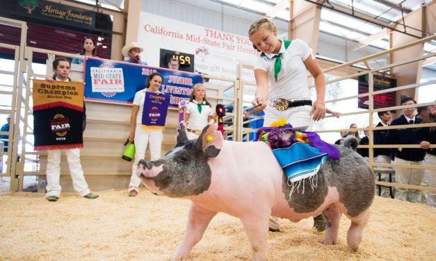FFA Members Prepared for California Mid-State Fair