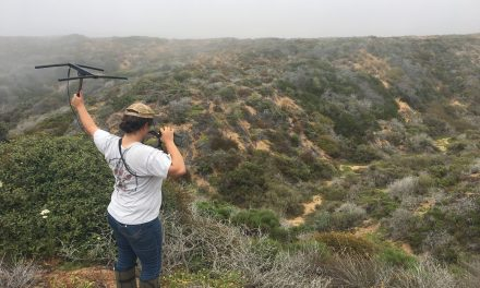 Rattlesnakes May Like Climate Change, Cal Poly Study Says
