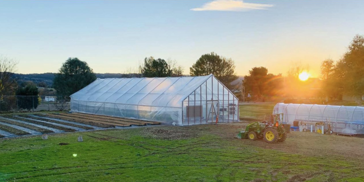 Templeton Hills Community Farm Prepares for First Anniversary Celebration