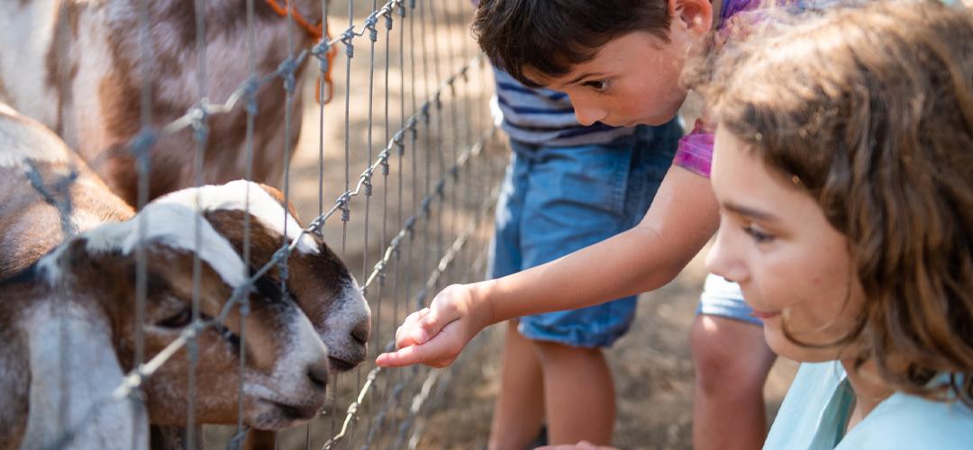 1st Open Farm Day in SLO County