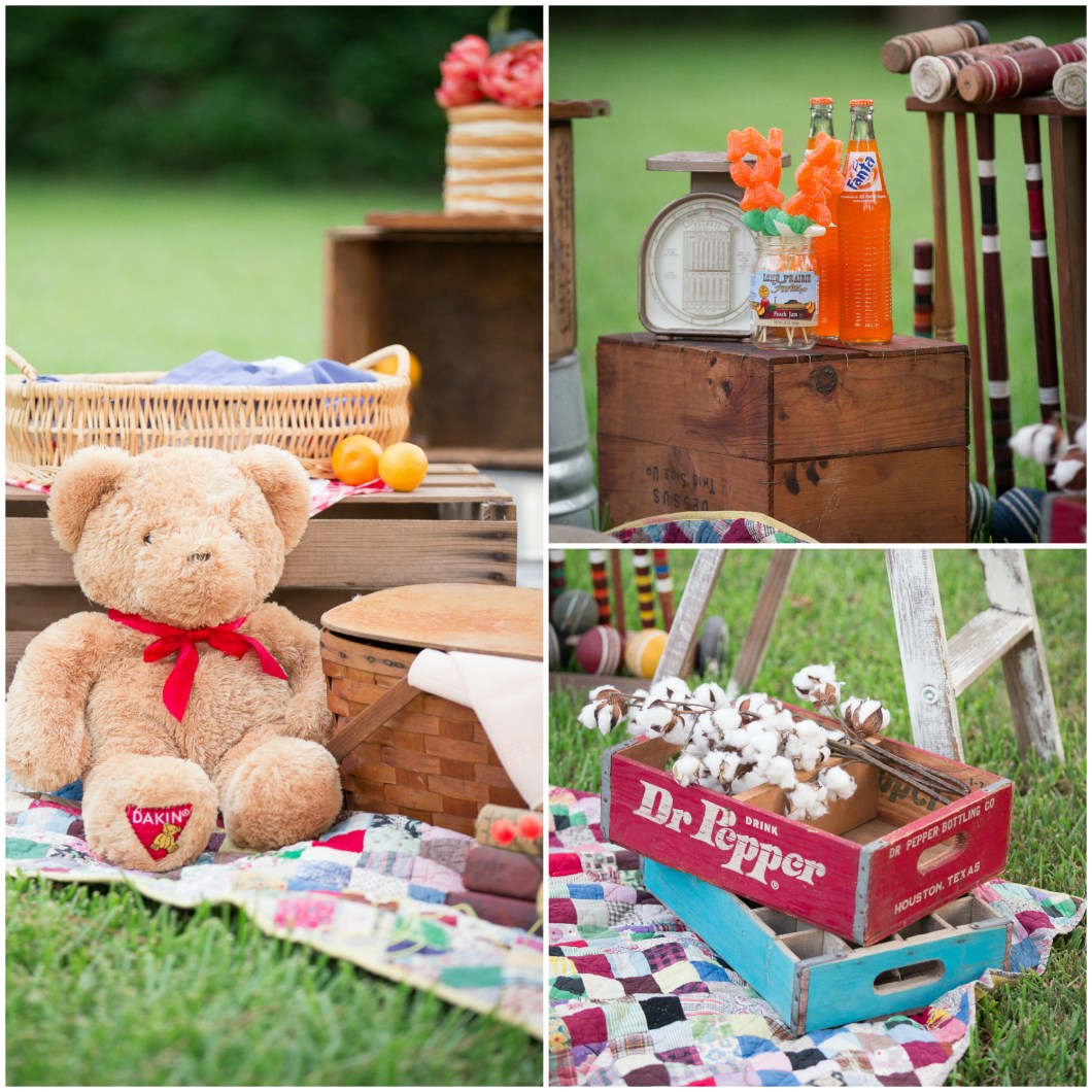 Summer Picnic Mini Sessions
