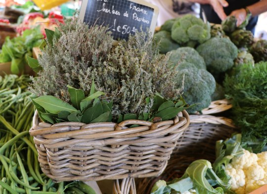 basket of herbs at the french market