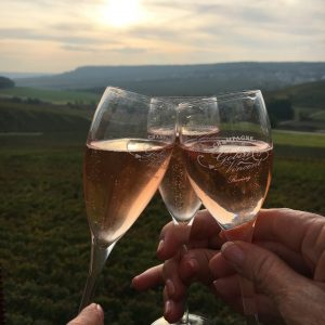 You're Invited for Wine & Food champagne toast