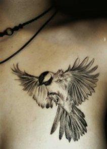 swalloow tatoo onn chest