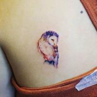 Adorable owl with beautiful colors. http://stylesweekly.com/tattoo/