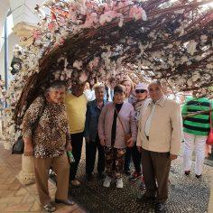 """Centro de Participación Activa """"Los Naranjos II"""" Flora 2019"""