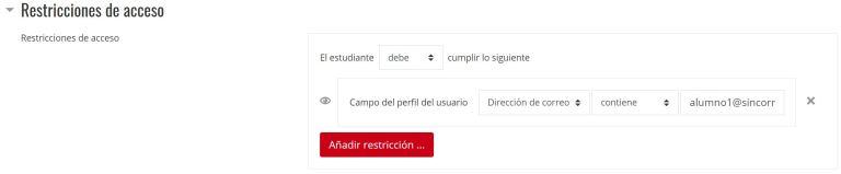 Tipos de restricciones – Perfil de usuario
