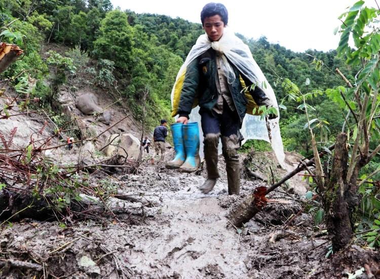 """Lẽ nào lời nguyền của rừng xanh-""""phá sơn lâm, đâm hà bá"""" đã hiển hiện qua những hậu quả nặng nề như đã thấy?. (Ảnh: Vietnam+)"""