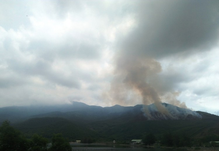 Nhiều vụ cháy rừng vẫn xảy ra. (Ảnh: Vietnam+)