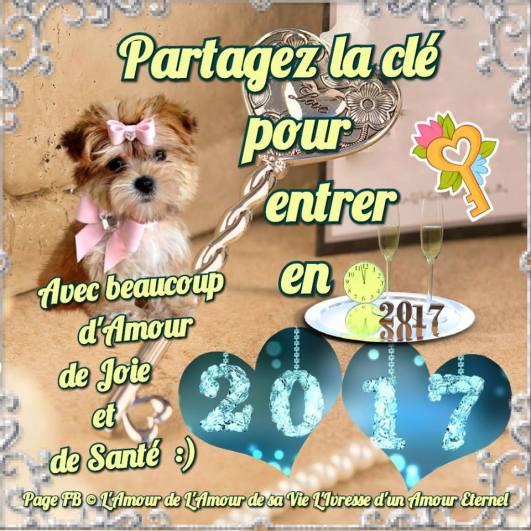 bonne-annee_064