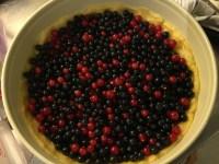 鋪完之後,把野莓倒進去