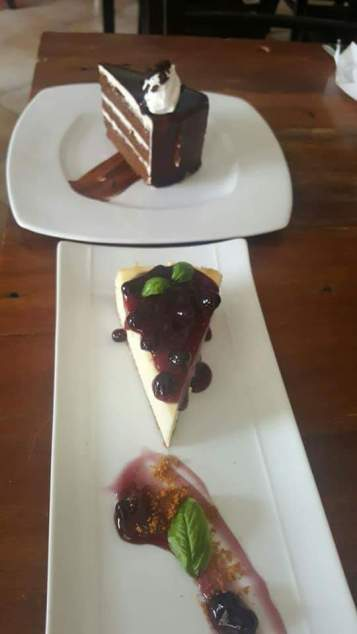 Chocolate Cake and Blueberry Cheese Cake