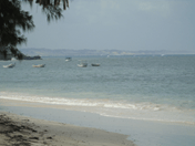 The Kenya Coast – a mixed picture of top quality, mediocrity and sad decline (Part 2 of four) #Malindi's Driftwood Club - a barefoot paradise