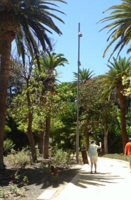 Parque García Sanabria, Santa Cruz de Tenerife