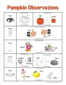 Pumpkin Observation Chart