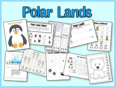 Polar Regions Printables