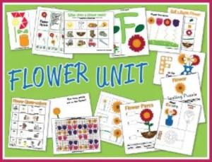 Flower Preschool Printables