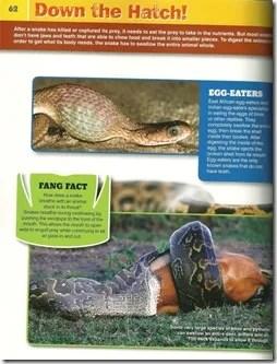 snakeopedia