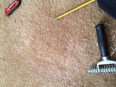 carpet stain removal lawton ok