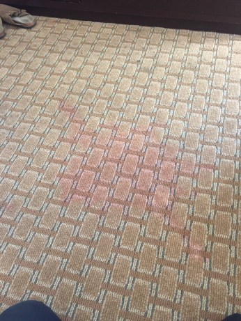 carpet color restoration lawton ok