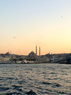 View from Galata harbor.