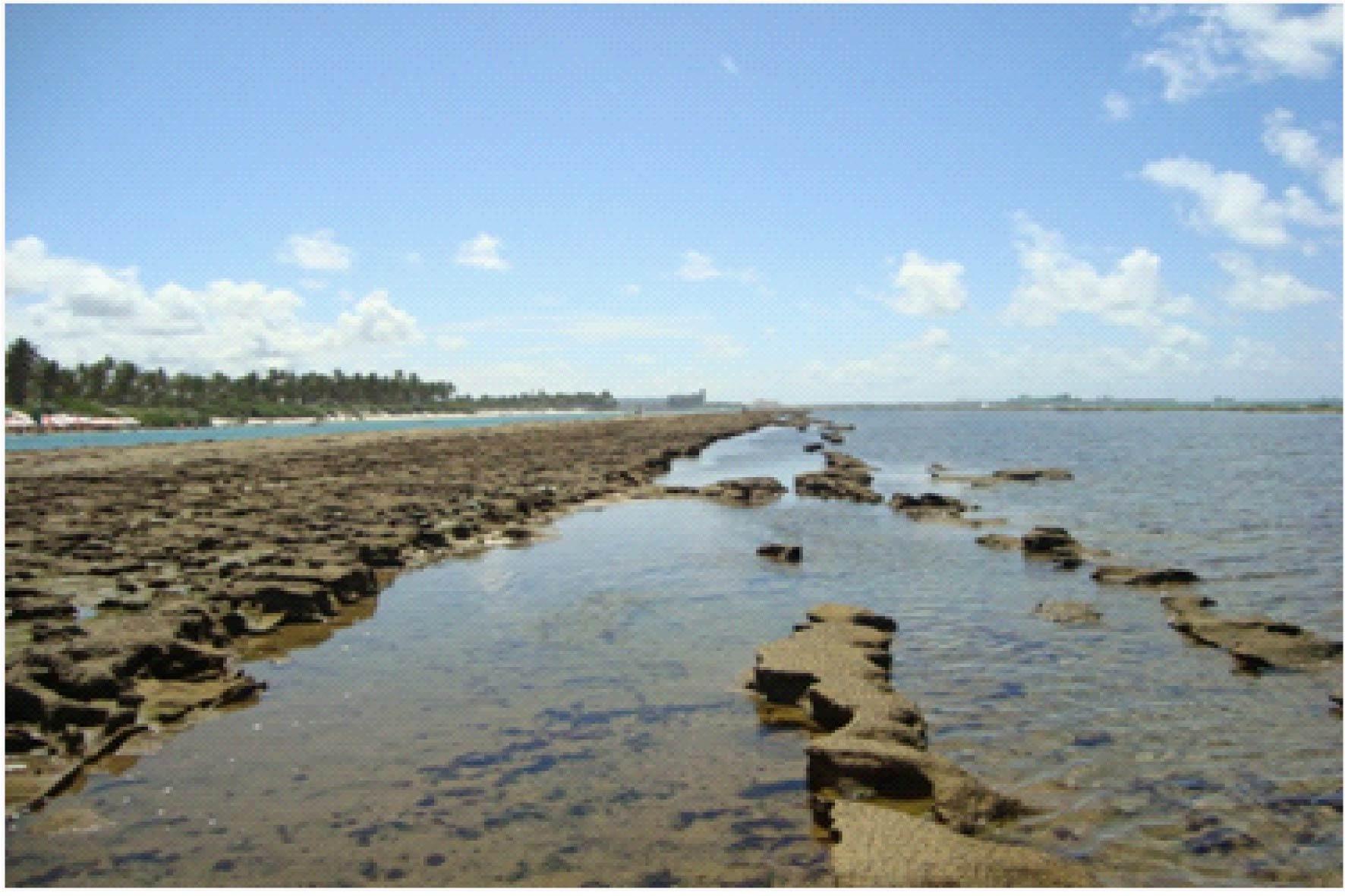 Muro Alto (praia com 7km de arrecife natural)