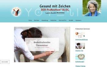 frank-fischer-webdesign-02