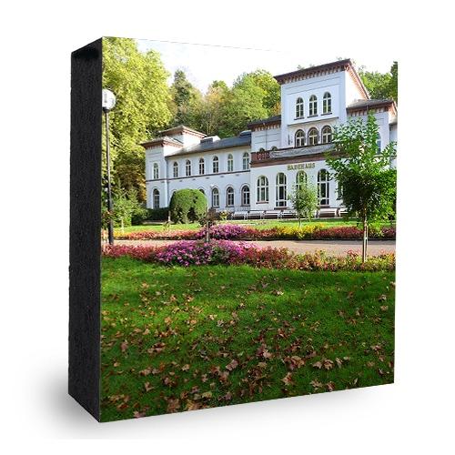 Kurhaus Bad Soden Kurpark