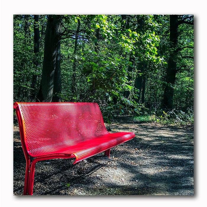 Rote Bank Wald- Atelier Klick Blick