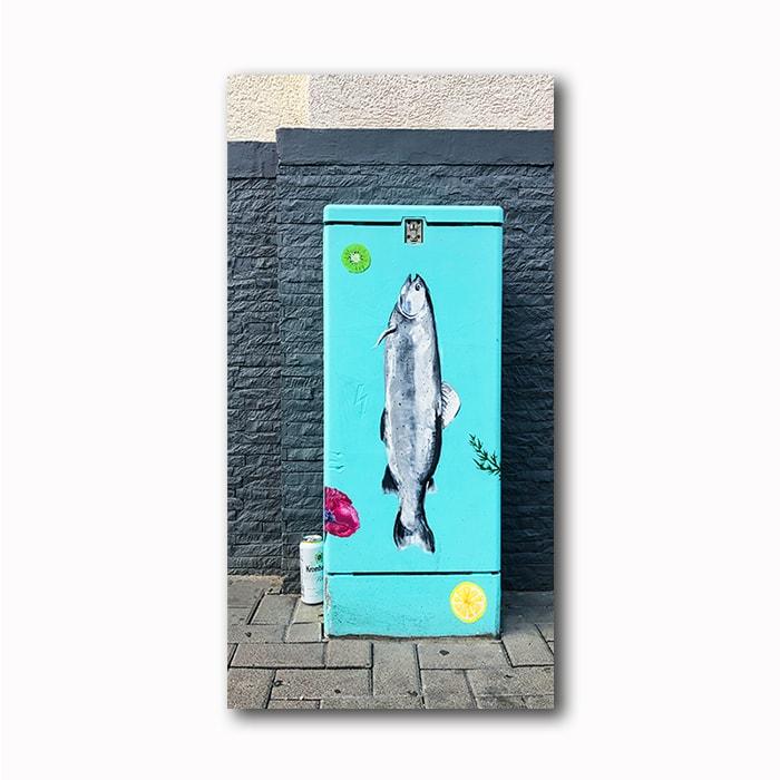 Fisch Strom Kunst- Foto auf Holz Atelier Klick Blick